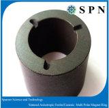 De gesinterde Anisotrope Permanente Ringen van de Magneet voor Motor