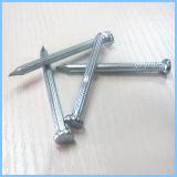 電流を通された具体的な鋼鉄釘