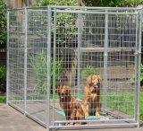 Im Freien geschachtelte schwarze Puder-Überzogene geschweißte Hundehundehütten, Hundeläufer-Fabrik