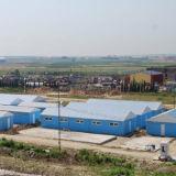 La estructura de acero vertió con la certificación del Ce