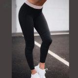 Дамы Gymwear установлены брюки капри осуществлять строгий брюки