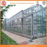 花のためのガラスか空の緩和されたガラスの庭の温室
