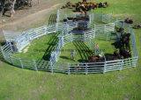 가축 검술을%s 강철에 의하여 직류 전기를 통하는 가축 위원회