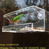 Alimentateur d'oiseaux de fenêtre acrylique populaire avec joint d'étanchéité et plateau
