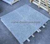 A buon mercato/granito grigio-chiaro/grigio naturale G602 per la parete/pavimento