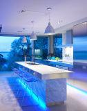 décoration de maison de lumière de bande du roulis Ledsmd5050 Imperméable à l'eau-Flexible-DEL de 5m