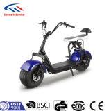 Scooter électrique du scooter 1000W Citycoco