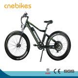 Nuevo modelo de la grasa de la nieve bicicleta eléctrica Ebike