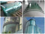Bestes Preis-Sicherheitsglas 5mm kurvte ausgeglichenes Glas