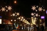 Des Arabien-Dubai Weihnachtsmotiv-Beleuchtung Regierungs-Projekt-2D LED für Straße