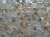 Мозаика раковины 20 свежей воды цвета природы