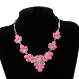 De AcrylHalsband van het Kristal van de Legering van de bloem, de Juwelen van de Manier