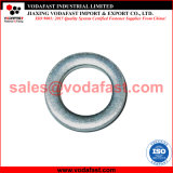DIN 1441 Galvanized Steel Flat Washer for Bolt