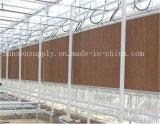 Gewächshaus-Gebrauch-Kühlsystem-Verdampfungskühlung-Auflage
