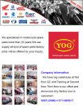 Yog Motorcycle Parts Pare-brise pour Cg-125 Black Wind Shield