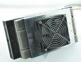 Thermoelektrische Moudule Peltier Luft-Kühlvorrichtung mit Kühlkörper