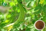 Natureza da alimentação de fábrica extrato de melão amargo Charantin 10% 20%