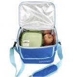 女性の大人の人のアルミニウム食糧昼食のピクニッククーラー袋