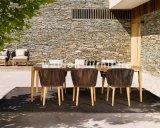 의자 또는 정원 의자 또는 옥외 의자를 식사하는 Walden 신제품
