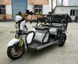 3車輪の大人48V500Wの自動人力車の乗客のタクシーの電気三輪車
