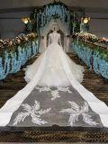 Noiva Gown/2017 na moda nupcial real do vestido de casamento/do trem catedral de Champagne