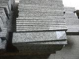 큰 꽃 백색 G439 화강암 Polished Tiles&Slabs&Countertop