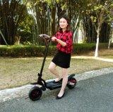 Motorino elettrico di scossa di sicurezza della rotella della bici 2 di svago esterno per la femmina con la certificazione del Ce