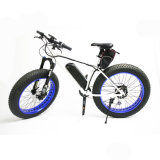 전기 뚱뚱한 타이어 자전거, 바닷가 함 눈 자전거