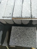 De de natuurlijke Donkere Grijze G654 Kei van het Graniet/Steen van de Kubus buiten Bestrating