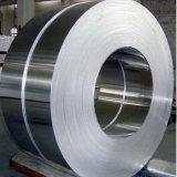 304 304L 316 316L 310 321 tiras/rolo/bobina do aço inoxidável