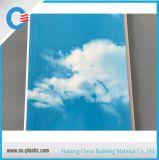 Panneau de mur de estampage chaud de plafond de PVC de panneau de PVC du ciel bleu 25cm
