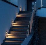 Rasen Luminairs Instrumententafel-Leuchte mit LED-011