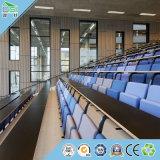 Panneau de mur de plafond de gymnase de matériau de construction de plafond