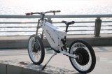 Motore elettrico 8000W di QS per Bricycle