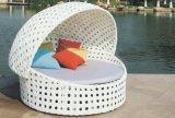 파리 등나무 침대 겸용 소파 안뜰 가구 정원 가구 (TG-JW30)