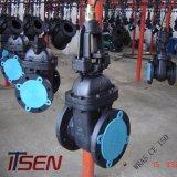 Valvola a saracinesca duttile standard della sede del metallo del ferro Pn16 dello SP di Mss