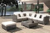 贅沢な藤の屋外の家具、庭のソファー、屋外のソファー(TG-1279)