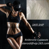 El mejor Bodybuilding Boldenone esteroide Cypionate Cypionate en negrilla de la alta calidad del precio