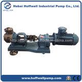 CE APPROUVÉ NYP160 en acier inoxydable de pompe à engrenage interne de la mélasse