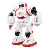 Neuheit-scherzt lustiger intelligenter pädagogischer Gesang-Tanzen-Roboter-Plastik Spielwaren
