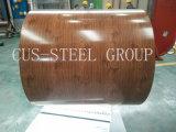 Strato stampato di legno stampato della bobina d'acciaio galvanizzato reticolo in bobina