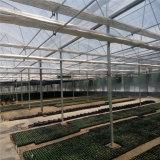 De volledige Succulente Serre van de Landbouw van Installaties voor het Moderne Tuinieren en Planten van de Bloem