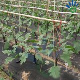 17~70G/M2 de controle de plantas daninhas biodegradáveis de PP não tecidos Tapete de Ervas Daninhas