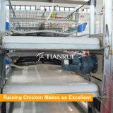 Машина чистки позема цыпленка с поясом позема