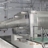 Maiale Application e New Circostanza Pig Slaughter House