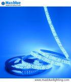 DC24V/12V 240LEDs per alto indicatore luminoso di striscia di Istruzione Autodidattica Dimmable 3528 LED del tester per la promozione