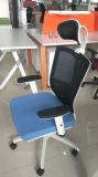 Nueva silla de la oficina del acoplamiento 2017 en la oficina