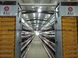 4 couches de l'équipement Cascade de poules pondeuses en cage