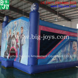 Amusement Park Inflatable Bounce House
