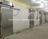 Fresco-Mantendo o quarto de armazenamento frio com painel do plutônio e unidade de Comressor do tipo